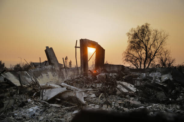 California「Multiple Wildfires Continue To Ravage California Wine Country」:写真・画像(9)[壁紙.com]