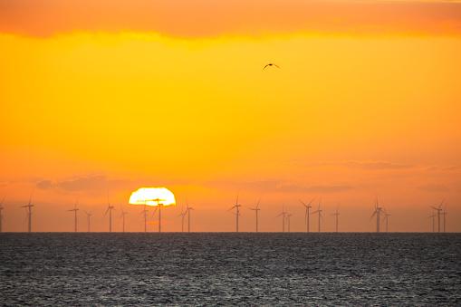 Irish Sea「The sun setting behind the Walney Offshore Wind Farm taken from Walney Island, Cumbria, UK.」:スマホ壁紙(16)