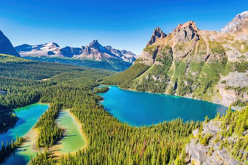 Yoho National Park「Lake O'Hara Yoho National Park British Columbia Canada」:スマホ壁紙(10)