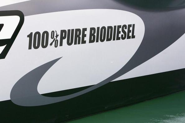 Canola「Auckland International Boat Show」:写真・画像(16)[壁紙.com]