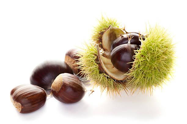 Chestnuts:スマホ壁紙(壁紙.com)