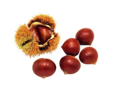 栗「Chestnuts」:スマホ壁紙(1)
