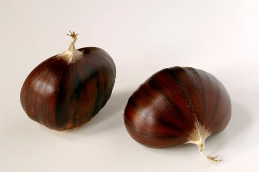 栗「Chestnuts」:スマホ壁紙(10)