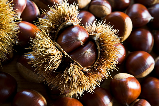 Chestnut - Food「Chestnuts」:スマホ壁紙(2)