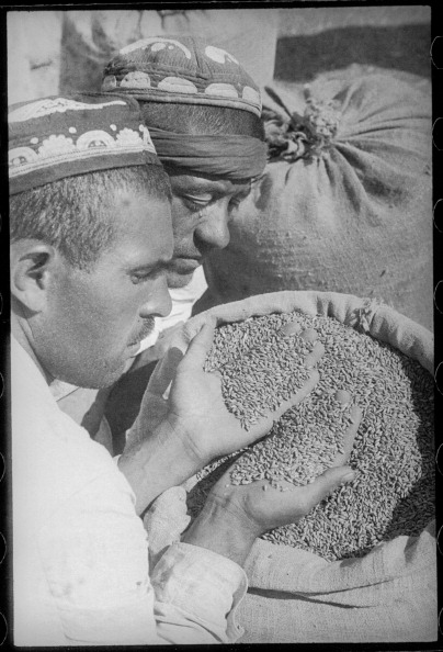 Uzbekistan「Collective Farmers」:写真・画像(16)[壁紙.com]