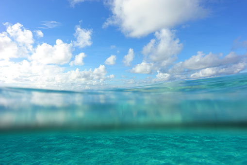 View Into Land「Tropical sea, partial underwater view」:スマホ壁紙(7)