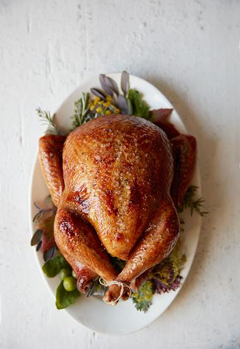 Turkey - Bird「Plated Turkey with Garnish」:スマホ壁紙(16)