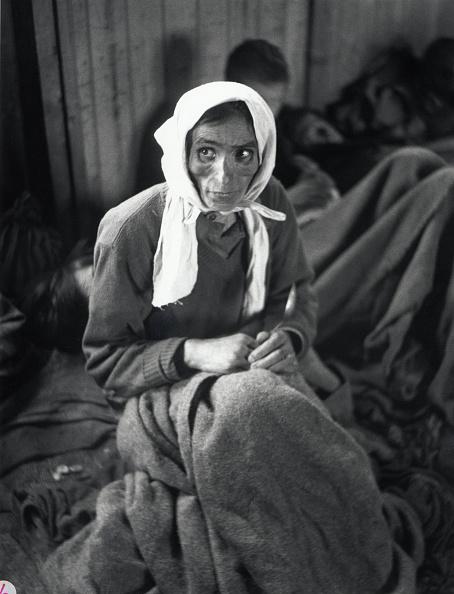 ジプシー「Tyhpus At Belsen」:写真・画像(17)[壁紙.com]