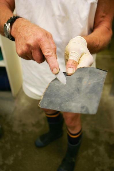 Sharpening「Dredge Oyster Harvesters Of New Zealand」:写真・画像(14)[壁紙.com]