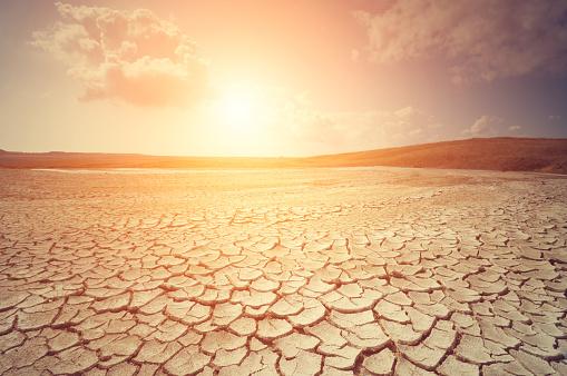おとぎ話「砂漠 」:スマホ壁紙(11)