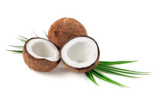 ヤシの木「ココナッツ」:スマホ壁紙(5)