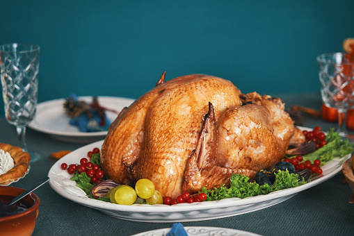 Turkey - Bird「Having Traditional Holiday Stuffed Turkey Dinner」:スマホ壁紙(3)