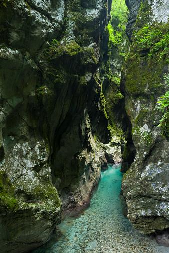 Ravine「Tolmin Gorges」:スマホ壁紙(8)