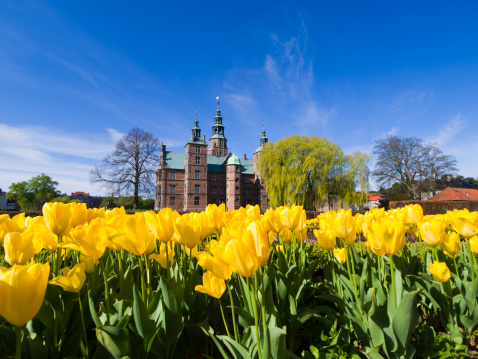 Danish Culture「Tulips and Rosenborg Castle」:スマホ壁紙(8)
