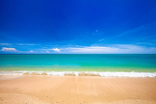 Paradisaical tropical golden sand Hawaiian beach:スマホ壁紙(壁紙.com)