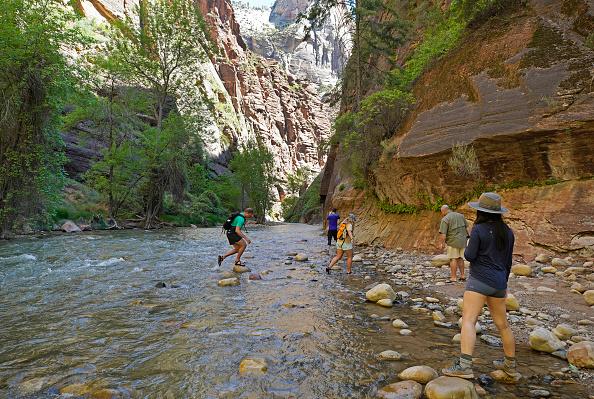 Hiking「Utah's Zion National Park Reopens To Visitors」:写真・画像(13)[壁紙.com]