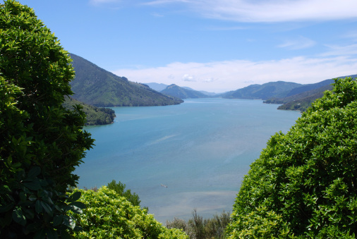New Zealand Culture「Marlborough Sounds, New Zealand」:スマホ壁紙(17)