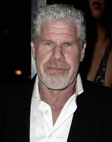 """Ron Perlman - Actor「Columbia Pictures And Annapurna Pictures' """"American Hustle"""" Special Screening - Red Carpet」:写真・画像(3)[壁紙.com]"""