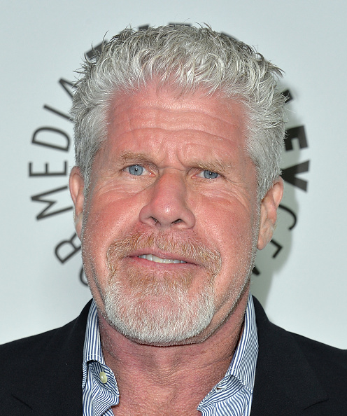 Ron Perlman - Actor「The Paley Center For Media's 2013 Benefit Gala Honors FX Networks With The Paley Prize For Innovation & Excellence - Arrivals」:写真・画像(6)[壁紙.com]