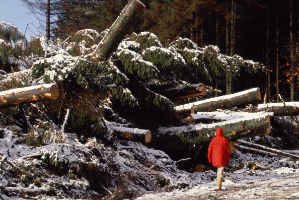 Tom Stoddart Archive「Storms On Dartmoor」:写真・画像(0)[壁紙.com]