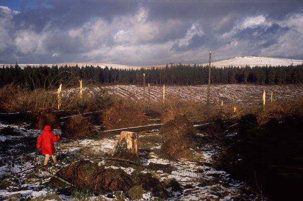 Moody Sky「Storms On Dartmoor」:写真・画像(15)[壁紙.com]