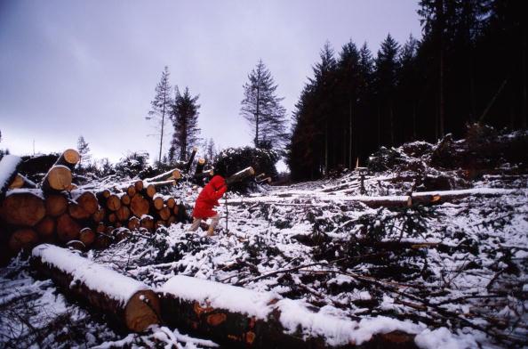 Tom Stoddart Archive「Storms On Dartmoor」:写真・画像(15)[壁紙.com]