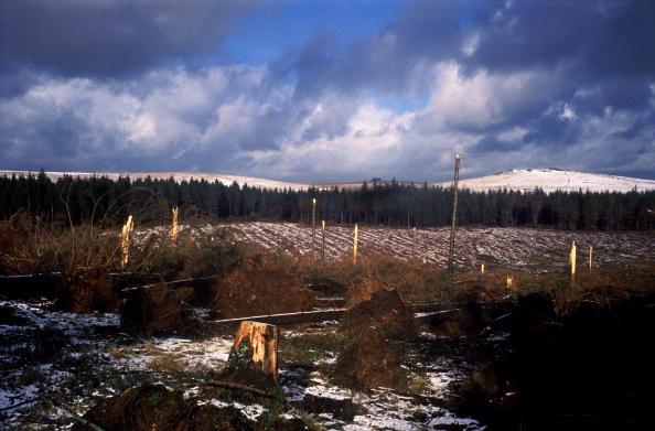 Moody Sky「Storms On Dartmoor」:写真・画像(4)[壁紙.com]
