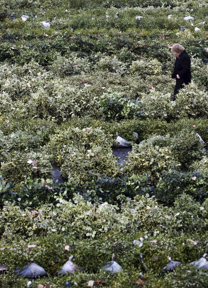 Magic Kingdom「Christmas Mistletoe Blessed In Druid Ceremony」:写真・画像(0)[壁紙.com]