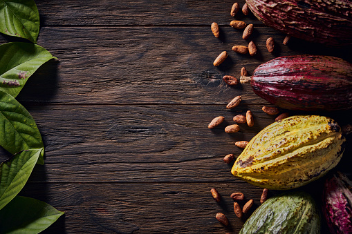 chestnut「Low key image of cacao fruits and cacao beans in old fashioned style on a wooden rustic table and copy space in frame」:スマホ壁紙(2)
