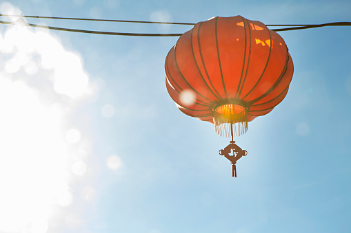 Chinese Lantern「chinese lantern」:スマホ壁紙(15)
