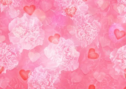 カーネーション「Mother's Day image (CG)」:スマホ壁紙(5)