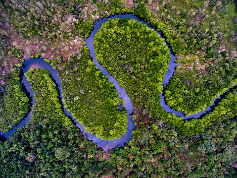 River「River swamp on Kho Rong island, Cambodia」:スマホ壁紙(15)