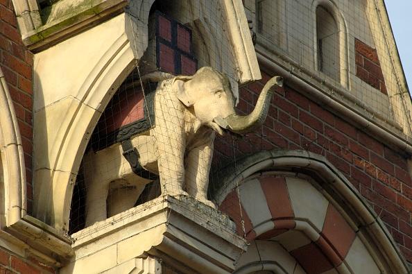 Tea Room「Elephant In Niche」:写真・画像(7)[壁紙.com]