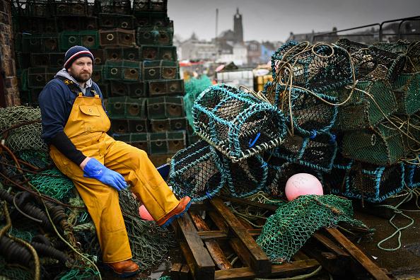 Brexit「Scottish Seafood Processor Decries Brexit Red-Tape」:写真・画像(16)[壁紙.com]