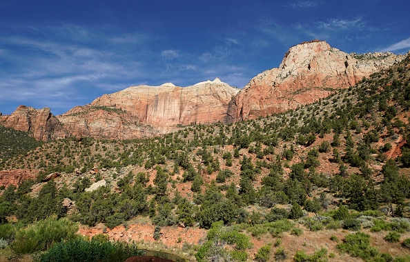 Utah「Utah's Zion National Park Reopens To Visitors」:写真・画像(6)[壁紙.com]