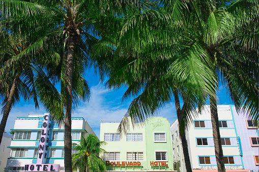 Miami Beach「Palm trees and art deco buildings」:スマホ壁紙(19)