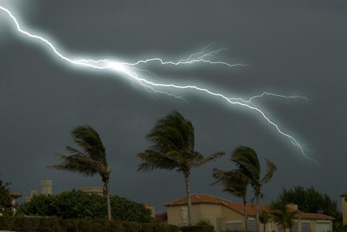 Thunderstorm「Palm Trees and Lightning」:スマホ壁紙(19)