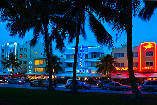Miami Beach「Palm trees and street at night」:スマホ壁紙(16)