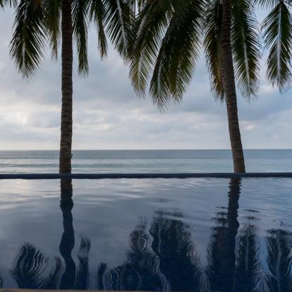 Sayulita「Palm Trees Reflected In The Water」:スマホ壁紙(11)
