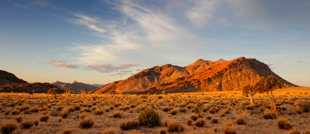 Kalahari Desert「Last light on desolate rock formation and quiver tree forest」:スマホ壁紙(3)