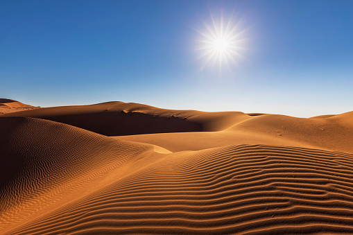 Namibia「Africa, Namibia, Namib desert, Naukluft National Park, sand dune against the sun」:スマホ壁紙(11)
