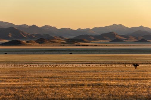 Steppe「Africa, Namibia, Sunrise, Tiras Mountains and Namib Desert」:スマホ壁紙(3)