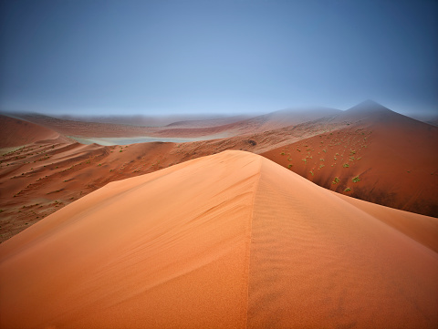 Namib-Naukluft National Park「Africa, Namibia, Namib-Naukluft National Park, Namib desert, desert dunes and fog」:スマホ壁紙(11)
