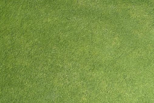 Green - Golf Course「Golf Grass Background」:スマホ壁紙(13)