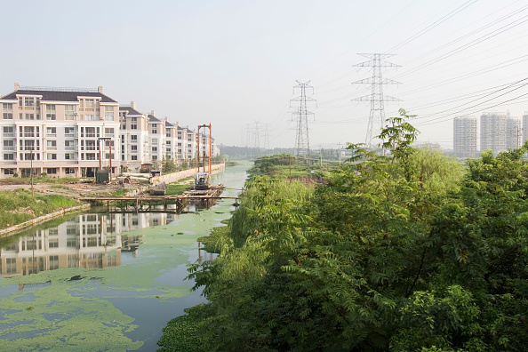 Algae「A river polluted with algae flows next to Tiandu Cheng, a Parisian-themed residential development under construction in Hangzhou, China, August 11, 2007.  The development was designed by the Hangzhou Urban planning institute with consultation from Atkins」:写真・画像(16)[壁紙.com]