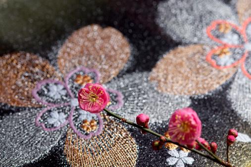 梅の花「Japanese plum on kimono」:スマホ壁紙(12)
