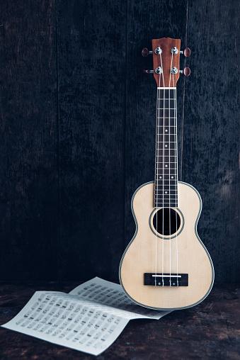 Ukelele「Ukulele with chord chart in front of dark background」:スマホ壁紙(19)