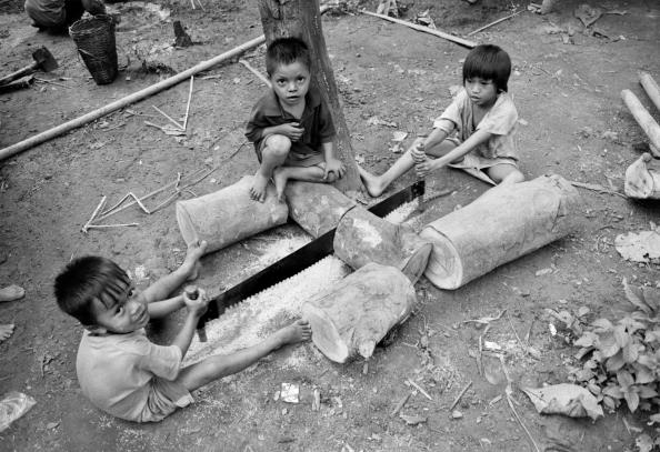 Responsibility「Malaria in Burma」:写真・画像(3)[壁紙.com]