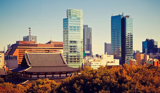 神社「コントラストの街、東京で」:スマホ壁紙(17)