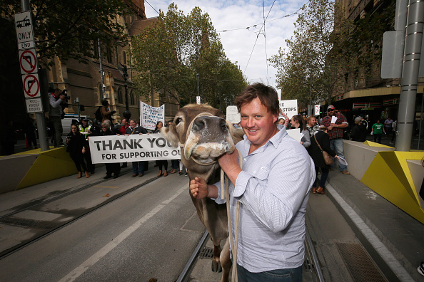 Finance and Economy「Victorian Dairy Farmers Rally For Fairer Milk Prices」:写真・画像(17)[壁紙.com]